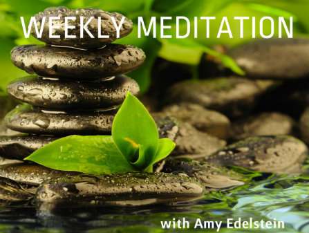 Weekly virtual meditation with Amy Edelstein