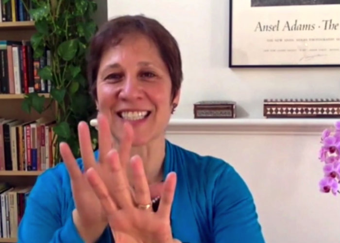 EnTheos Class on Renewal with Amy Edelstein