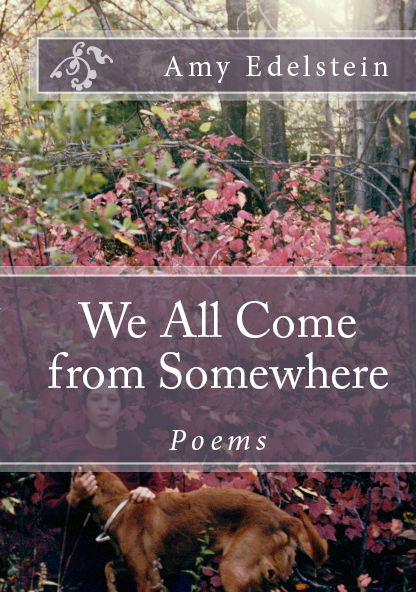 New poetry book from Amy Edelstein
