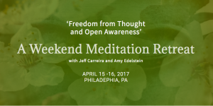 Spring Retreat with Amy Edelstein & Jeff Carreira