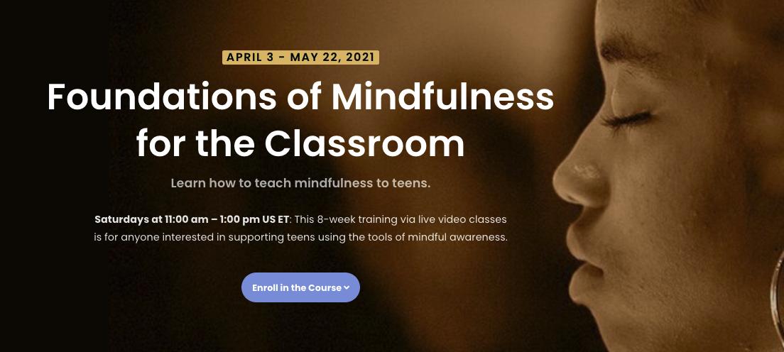 Foundations of Mindfulness Teacher Training